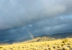 desert rainbow 5